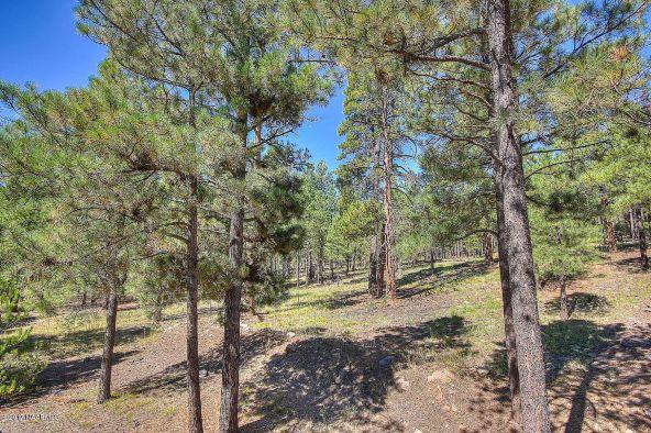 4814 W. Braided Rein, Flagstaff, AZ 86005 Photo 58