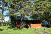 Home for sale: 13018 Lumberjack N.W. Rd., Shevlin, MN 56676