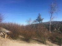 Home for sale: 0 Marin Ln., Lake Arrowhead, CA 92352