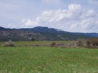 Home for sale: Tbd Coyote Run, Council, ID 83612