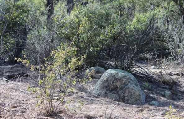 2695 W. Bentley Rd., Prescott, AZ 86303 Photo 6