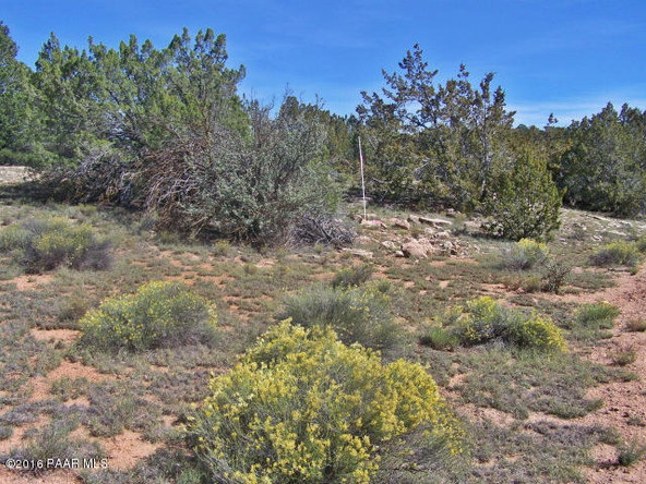 9095 W. Bandera Pass, Williams, AZ 86046 Photo 6