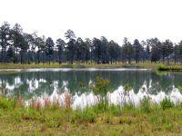 Home for sale: 540 Swift Creek Rd., Rembert, SC 29128