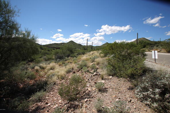 3167 W. Sparkling Starr, Tucson, AZ 85745 Photo 19