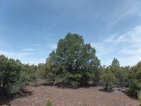 Home for sale: 002e Acr 3167, Vernon, AZ 85940