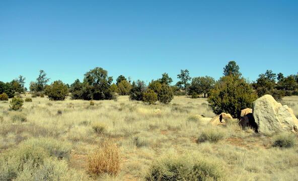 14125 N. Spotted Eagle Dr., Prescott, AZ 86305 Photo 6