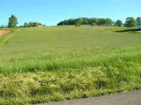 Home for sale: Tbd Crocketts Cove Rd., Wytheville, VA 24382