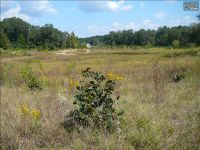 Home for sale: 1694-1 Hwy. 1 S., Lugoff, SC 29078