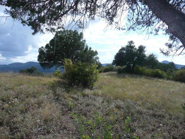 290 N. Navajo Trail, Young, AZ 85554 Photo 3