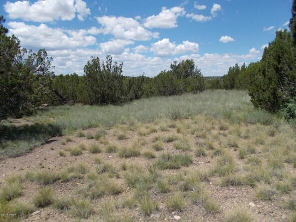 1926 Creekside, Show Low, AZ 85901 Photo 6