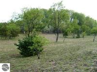 Home for sale: 1004 Tope Ct., Mancelona, MI 49659