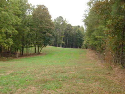1281 Co Rd. 112, Woodland, AL 36278 Photo 25