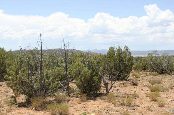 3 Stockman, Ash Fork, AZ 86320 Photo 5