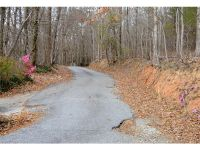 Home for sale: 37-A Wilderness Rd., Tryon, NC 28782