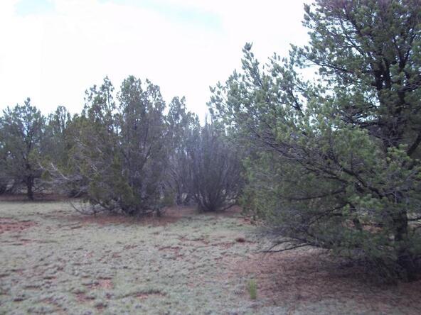 1142 E. Alimos Way, Williams, AZ 86046 Photo 7