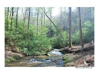 Home for sale: Lot 2 Mine Mountain Preserve, Pisgah Forest, NC 28768