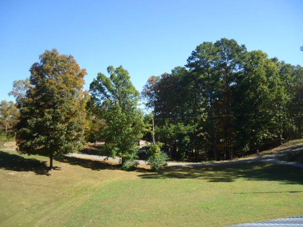 200 Co Rd. 336, Crane Hill, AL 35053 Photo 5