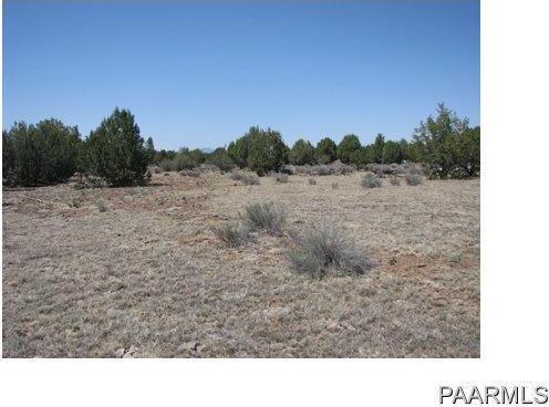 292 Sabrina, Ash Fork, AZ 86320 Photo 15