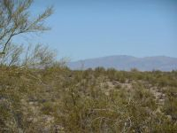 Home for sale: 4300 Black Mountain Rd., Wickenburg, AZ 85390