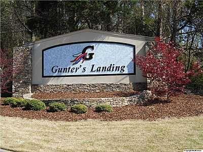 36 Augusta Rd., Guntersville, AL 35976 Photo 1