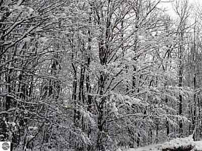 003 Heather Ridge Trail, Beulah, MI 49617 Photo 10