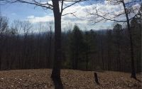 Home for sale: Lot 1 Bruce Mountain, Suches, GA 30560