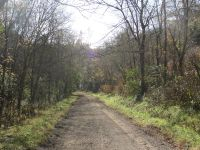 Home for sale: 85.12 Ac Happy Hollow Rd., Buffalo Valley, TN 38548