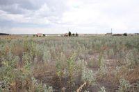 Home for sale: 925 Blackstone Dr., Pueblo West, CO 81007