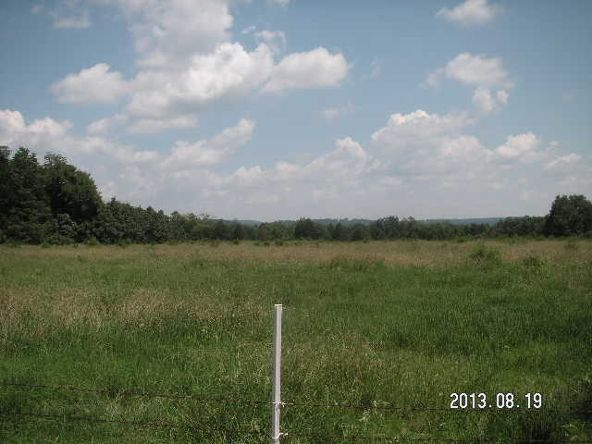 40 Acres M/L, Clarksville, AR 72830 Photo 4