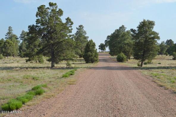 6921 Oak Hill Dr., Show Low, AZ 85901 Photo 10