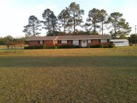Home for sale: 1088 Ga Hwy. 91 N., Colquitt, GA 39837