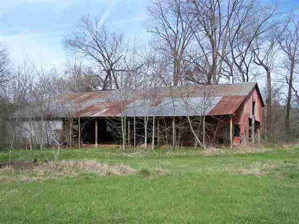 194 Acres Glazypeau Rd., Murfreesboro, AR 71958 Photo 17