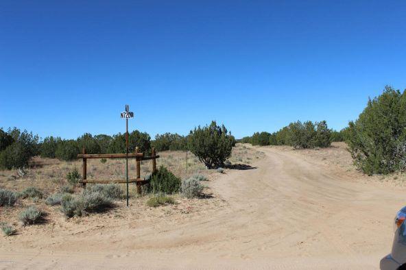 7209 N. Hwy. 191 --, Sanders, AZ 86512 Photo 8