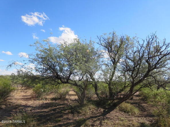 4.25 Ac N. Cascabel, Benson, AZ 85602 Photo 11