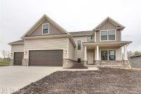 Home for sale: 205 Eldon Dr., Downs, IL 61736