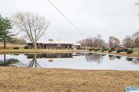 Home for sale: 12644 Hwy. 69, Baileyton, AL 35019