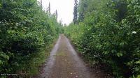 Home for sale: 42274 S. Moose Track Ln., Talkeetna, AK 99676