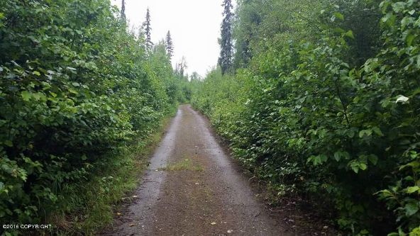 42274 S. Moose Track Ln., Talkeetna, AK 99676 Photo 1