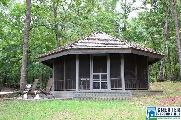 760 Black Acres Rd., Cropwell, AL 35054 Photo 43
