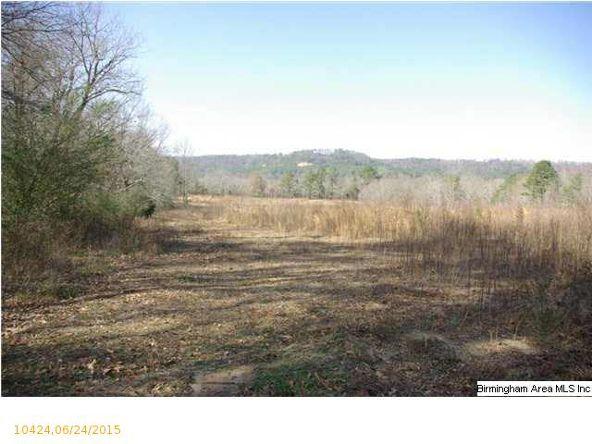 4 Horton Mill Rd., Oneonta, AL 35121 Photo 37