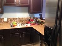 Home for sale: 245 Plainview Dr., Bolingbrook, IL 60440