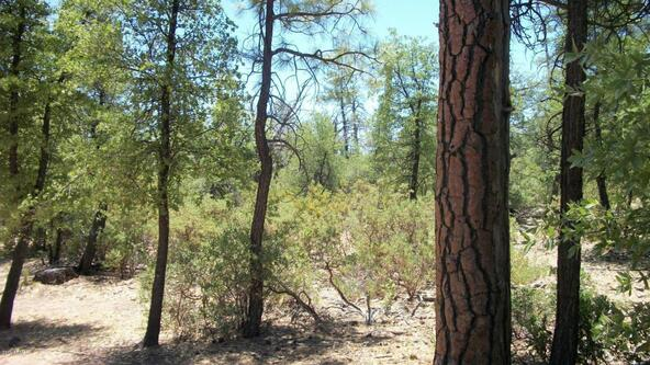 509 N. Chaparral Pines Dr., Payson, AZ 85541 Photo 24