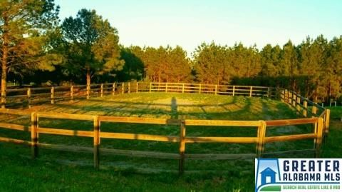 169 Shire Valley Rd., Chelsea, AL 35051 Photo 7