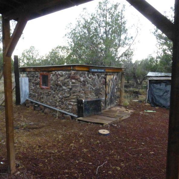 960 W. Buck Rd., Ash Fork, AZ 86320 Photo 6
