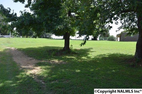 County Rd. 468, Hollywood, AL 35752 Photo 11