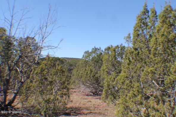 2 Acres Off Of Acr N. 3114, Vernon, AZ 85940 Photo 12