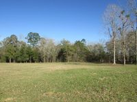 Home for sale: 000 Old Pavo Rd., Pavo, GA 31778