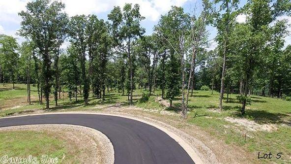 165 Ridgehaven, Hot Springs, AR 71913 Photo 8