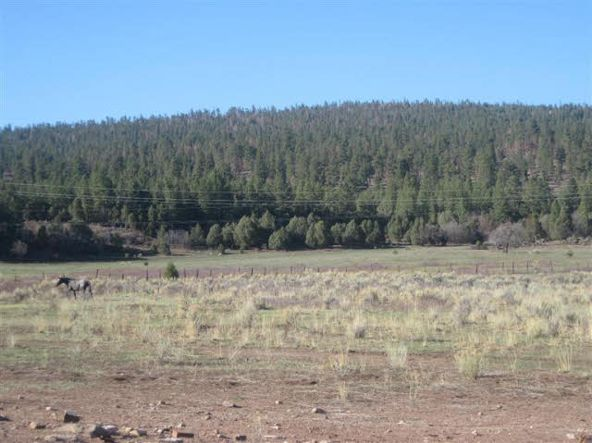 County Rd. 419, Tract A, Gallina, NM 87017 Photo 10