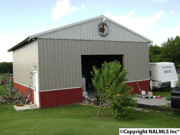 601 Boys Ranch Rd., Hartselle, AL 35640 Photo 4
